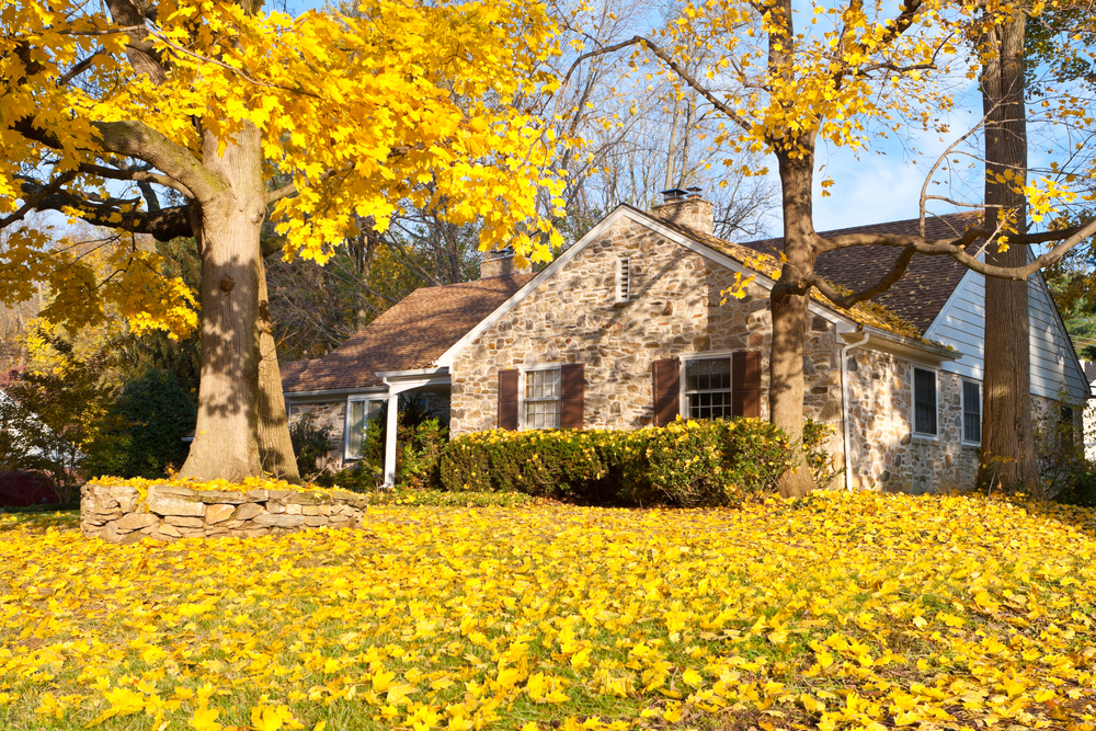 Bakersfield home with Fall colors